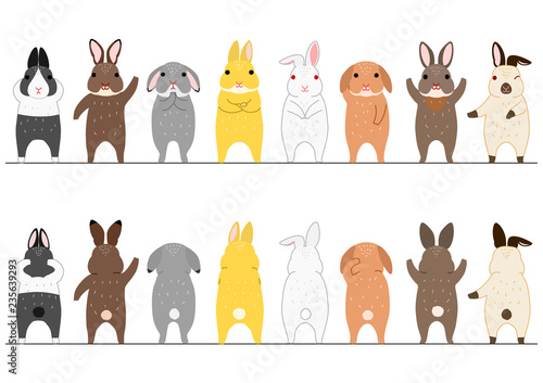 Fototapeta premium ładny zestaw królików