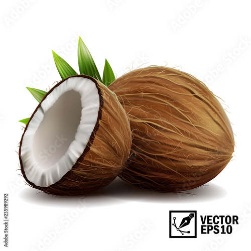Wall mural 3D realistic isolated vector set of whole coconut, coconut halves and palm leaves