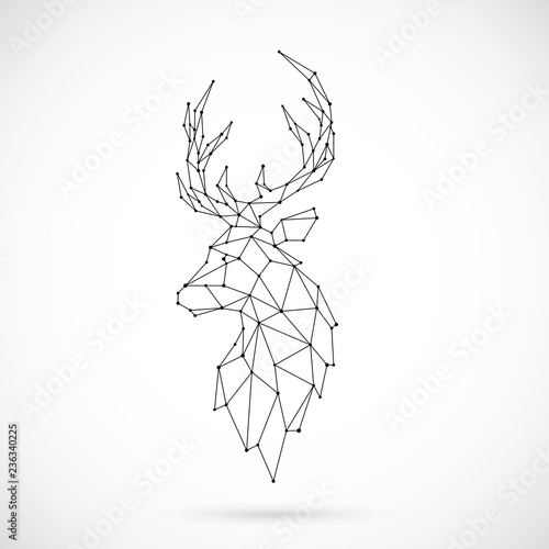 Geometric Deer silhouette. Image of Deer in the form of constellation. Vector illustration.