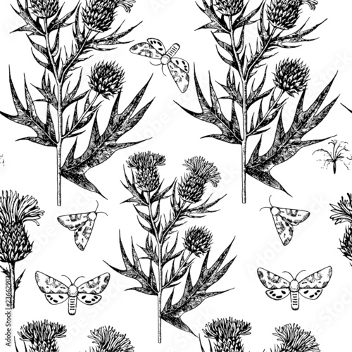 Valokuvatapetti Thistle vintage seamless pattern. Engraving imitation.