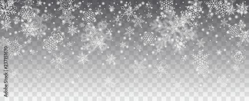 Canvas Print Vector snowfall, snowflakes of various shapes