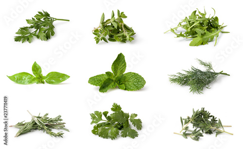 Fotografie, Tablou Fresh spices and herbs