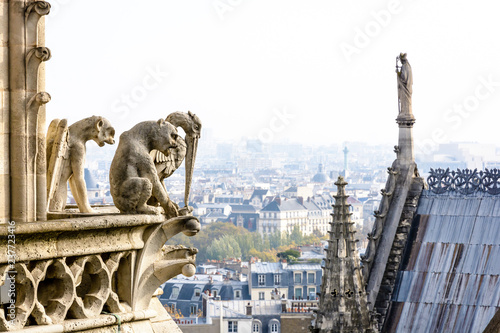Fotografia, Obraz Three stone statues of chimeras overlooking the rooftop of Notre-Dame cathedral and the historic center of Paris from the towers gallery with the city vanishing in the mist in the distance