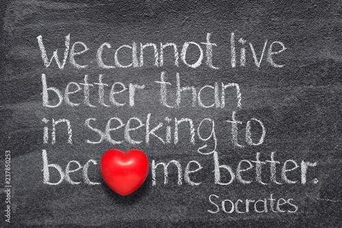 Obraz na plátně live better Socrates