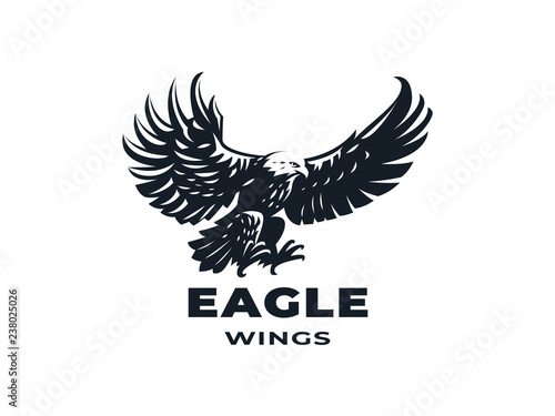 Fényképezés Eagle or hawk with outstretched wings.