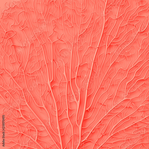 Leinwand Poster Living Coral color of the Year 2019