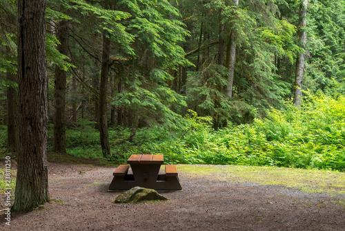 Vászonkép Campsite picnic table in Kleanza Creek Provincial Park, British Columbia, Canada