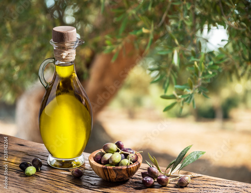 Bottle of olive oil and berries are on the wooden table under the olive tree.