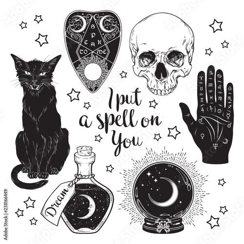 Fotografia Magic set - planchette, skull, palmistry hand, crystal ball, bottle and black cat hand drawn art isolated