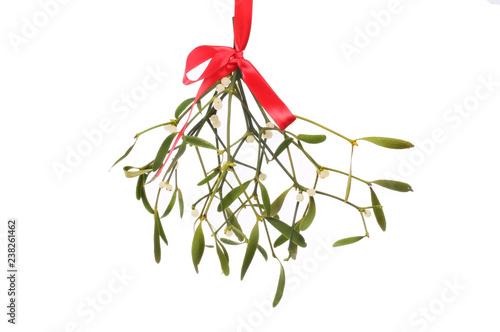 Carta da parati Mistletoe against white
