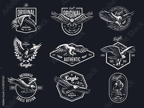 Fotografering Set of vector eagles.