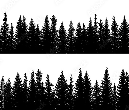 Canvas Print Horizontal banner silhouettes of spruce coniferous forest.