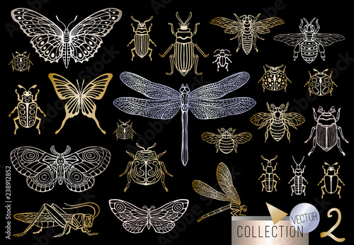 Obraz na płótnie Big hand drawn golden line set of insects bugs, beetles, honey bees, butterfly, moth, bumblebee, wasp, dragonfly, grasshopper