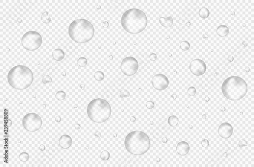 Photo Vector realistic water drops on transparent background without shadows