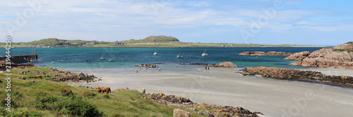 Fotografia, Obraz Panoramic view from Fionnphort on the Isle of Mull, across the bay to the Isle of Iona