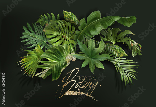 Wall mural Vector banner with green tropical leaves on green