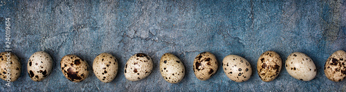Canvas Print Top view on wide banner with small quail eggs