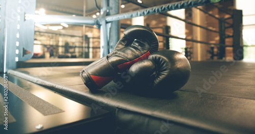 Photo boxing gloves in ring
