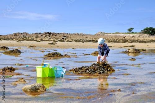 Stampa su Tela Un petit garçon qui pêche des crabes à marée basse en Bretagne