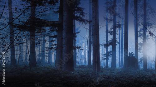 Leinwand Poster ein unheimlicher Fellteufel im düstreren, nebeligen Wald