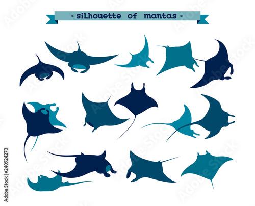 Wallpaper Mural Set of underwater manta ray