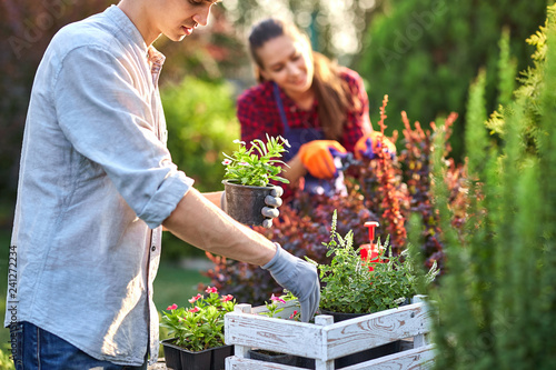 Valokuva Careful guy gardener in garden gloves puts the pots with seedlings in the white wooden box on the table and a girl prunes plants in the wonderful nursery-garden on a sunny day