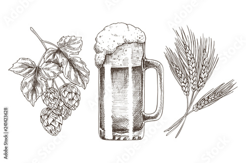 Photographie Hop Wheat and Frothy Beer in Glossy Glass Goblet