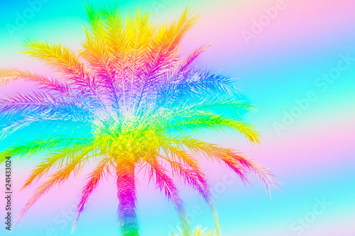Feathery palm tree on sky background toned in rainbow neon colors. Surrealistic funky style. Copy Space for Text. Tropical beach vacation wanderlust. Card poster flyer party invitation template