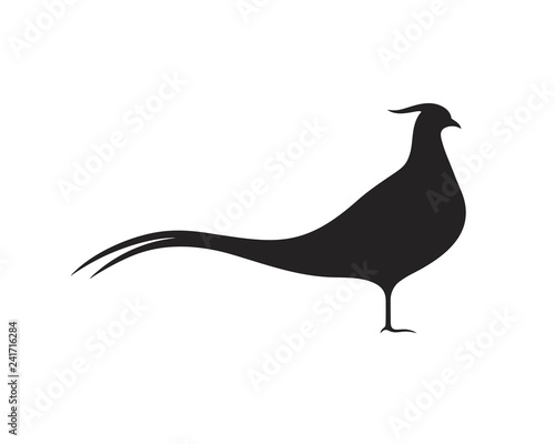 Stampa su Tela Pheasant silhouette. Isolated pheasant on white background. Bird