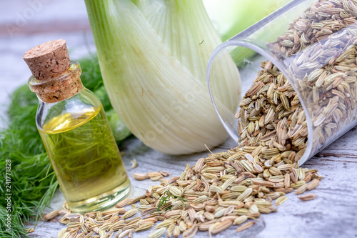 A bottle of fennel essential oil with fresh green fennel twigs and fennel seeds in the background