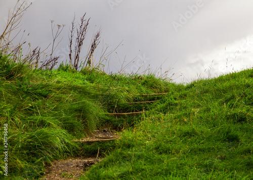 Outdoors step up grassy hillside Fototapet