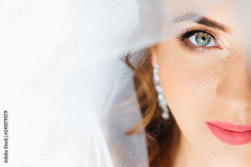Tela Close-up of the face of the bride's face with make-up and bridal