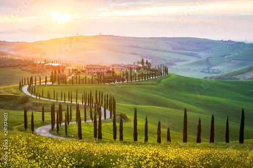 Fototapeta premium Typowy krajobraz Toskanii - kręta droga obsadzona cyprysami wśród zielonych łąk i pól. Zachód słońca we Włoszech.