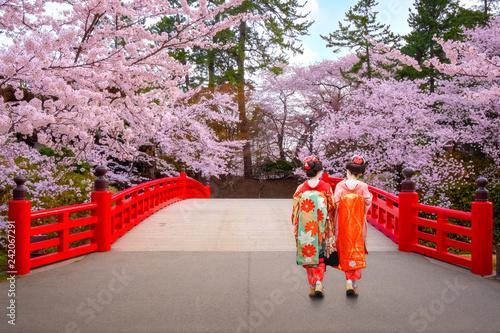 Fototapeta premium Japońska gejsza z Pełnym kwiatem Sakura - Czereśniowy okwitnięcie przy Hirosaki parkiem w Japonia