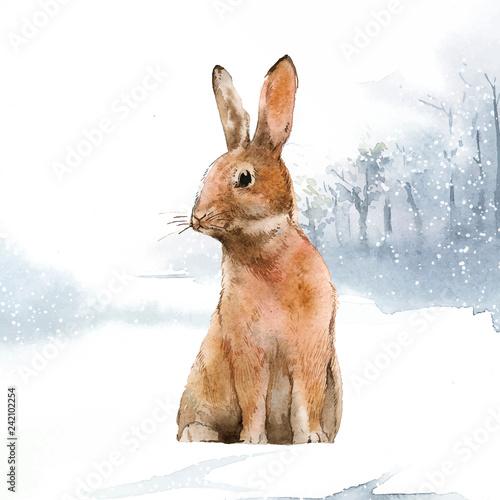 Fototapeta premium Dziki zając w zimowej krainie czarów malowany akwarelą wektorem