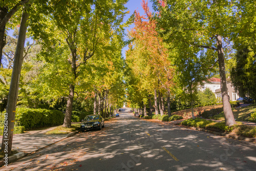 Fotografia Tree-lined street in a residential neighborhood on a sunny autumn day, Oakland,