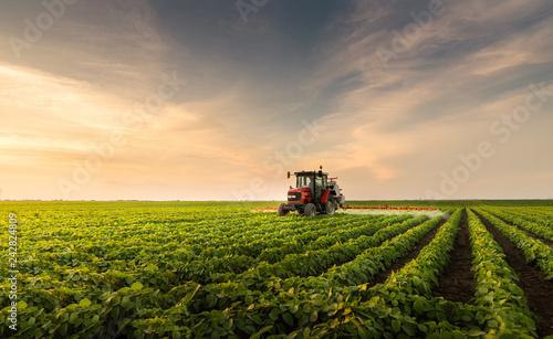 Slika na platnu Tractor spraying pesticides at  soy bean field