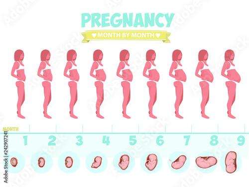 Obraz na plátně Pregnant beautiful woman vector infographics