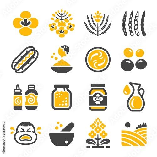 Fotografia mustard icon set,vector and illustratoin