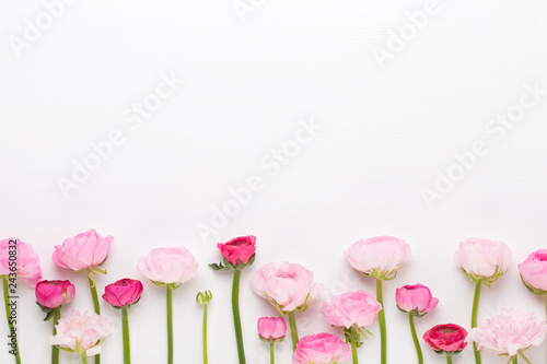 Photo Beautiful colored ranunculus flowers on a white background.