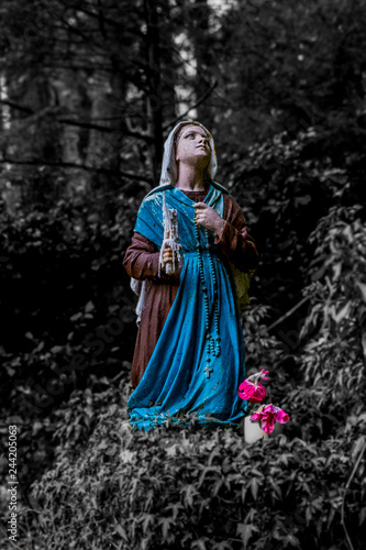 Obraz na plátně beautiful image of a statue of Bernadette praying to Our Lady of Lourdes with a