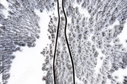 Valokuvatapetti Aerial view of a beautiful serpentine road surrounded by a forest of pine trees and white snow