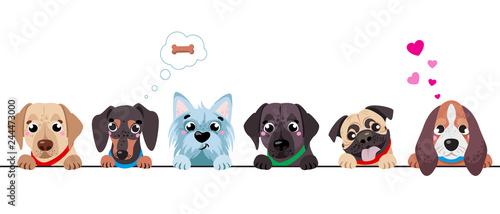 Canvas Print Cute dogs border set