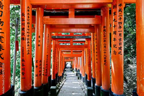Canvas Print japanese shrine