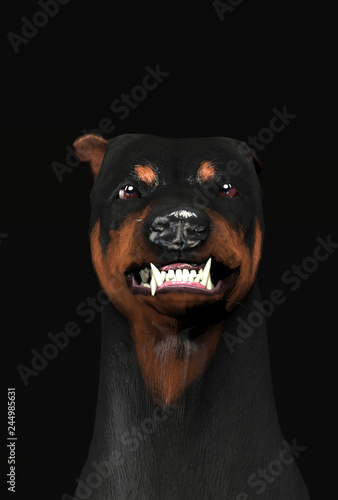 Fotografiet Scary and angry doberman head shot growling 3d illustration