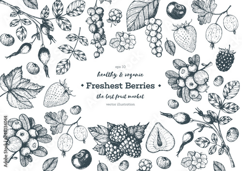 Fototapete Berries hand drawn, vector illustration frame. Hand drawn sketch illustration with currant, cranberry, blackberry, cherry, gooseberry, raspberry, strawberry. Healthy food design template with berries