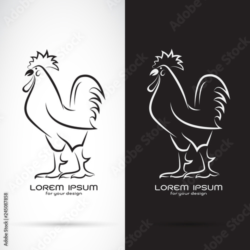 Vector of rooster or cock design on white background and black background Fototapeta