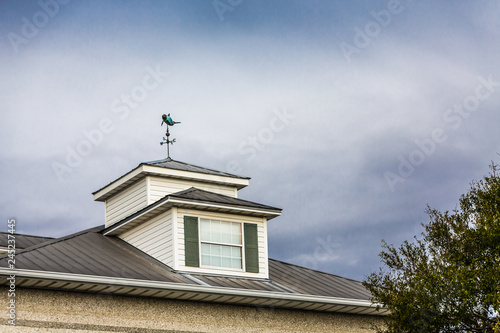 Wallpaper Mural Windvane on Cupola on Cloudy Day