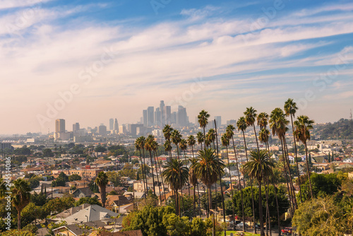 Fototapeta Los Angeles skyline at sunset with palm trees in the foreground