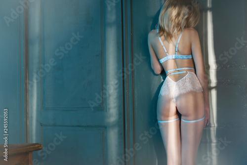 Fashion art photo of beautiful sensual woman in sexy lingerie
